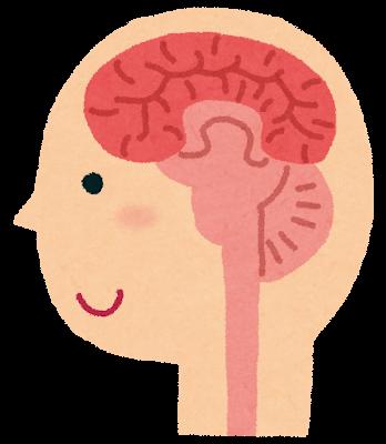 脳のメンテナンス