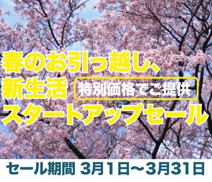 春の特別セール