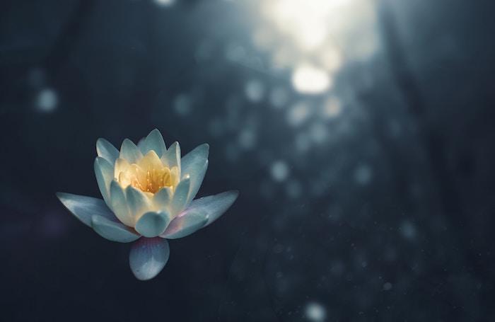 マインドフルネス2分間瞑想