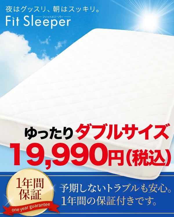 フィットスリッパー19990円